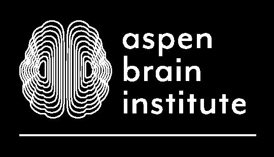 aspen brain institute